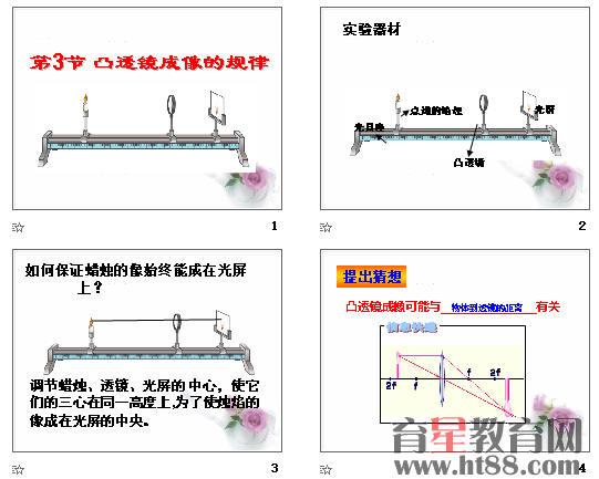 学生处组织结构图ppt